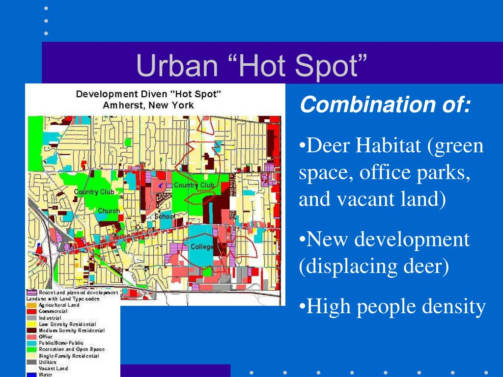 """Urban """"Hot Spot"""""""