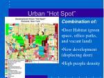 urban hot spot