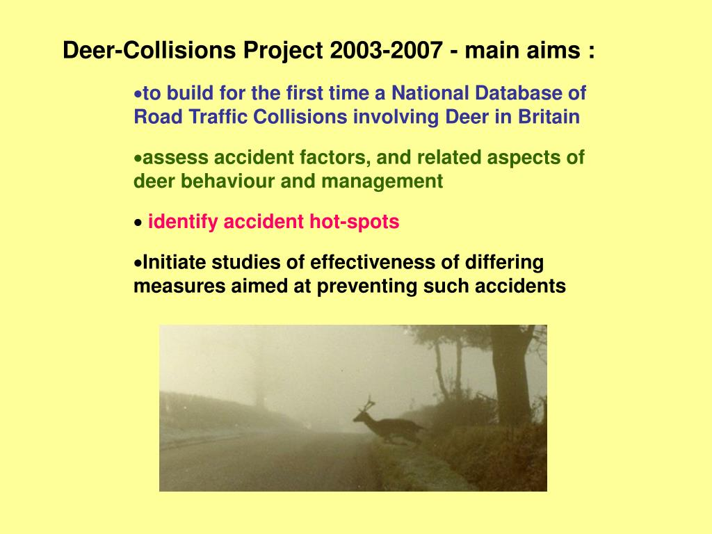 Deer-Collisions Project 2003-2007 - main aims :
