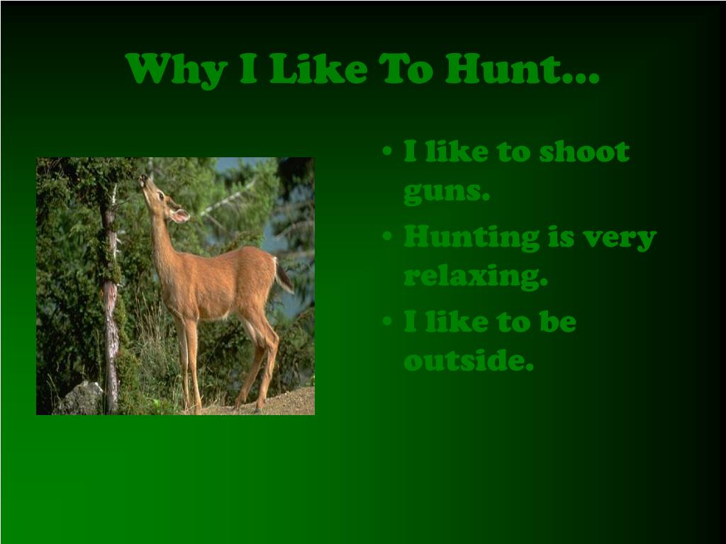 Why I Like To Hunt…