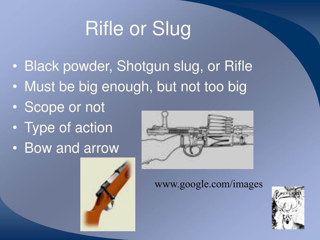 Rifle or Slug