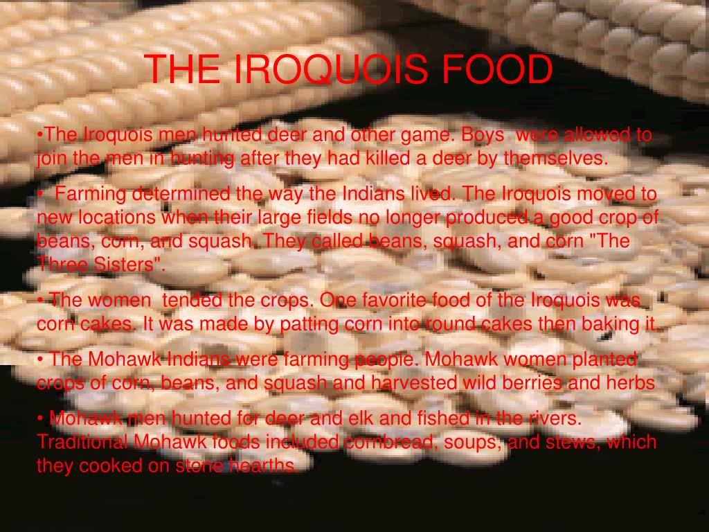 THE IROQUOIS FOOD