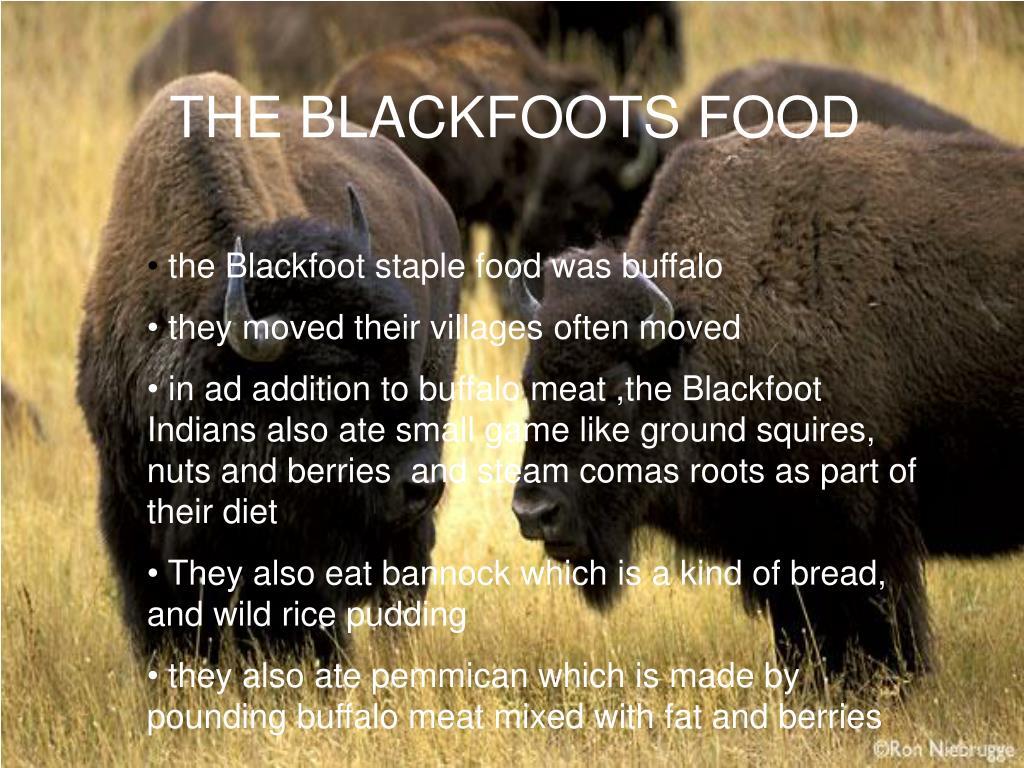THE BLACKFOOTS FOOD