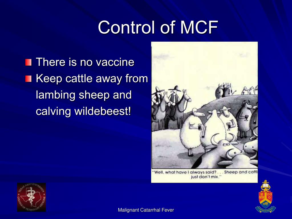 Control of MCF
