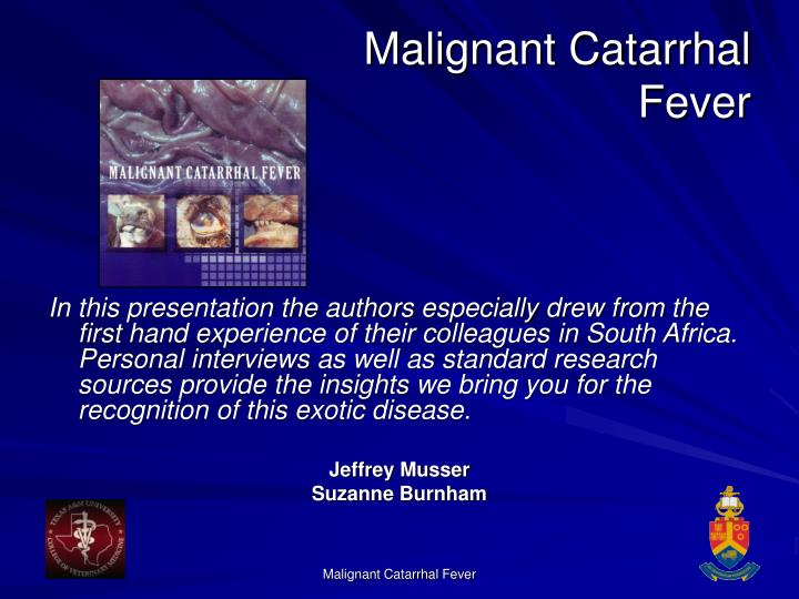 Malignant catarrhal fever3