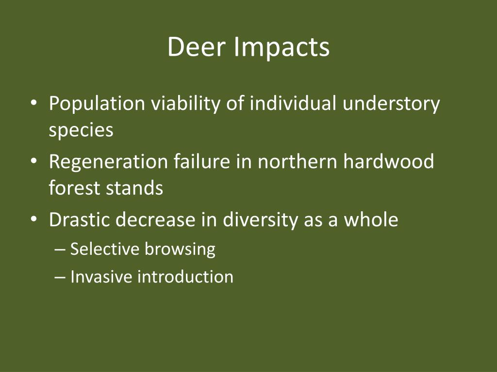 Deer Impacts