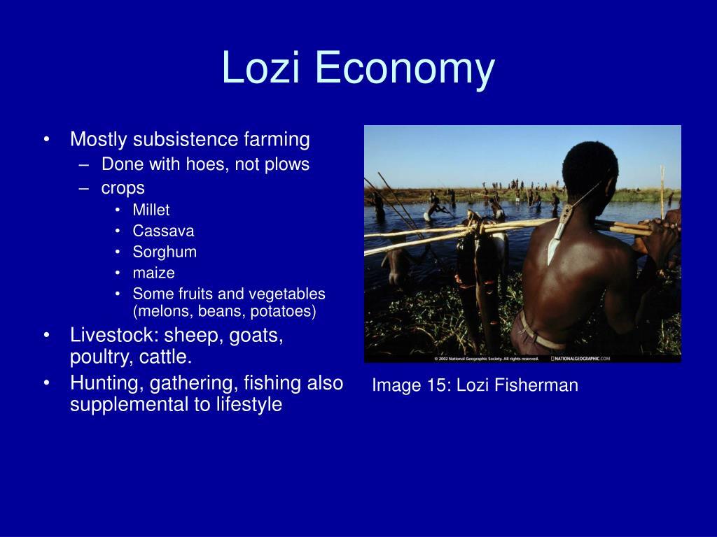 Lozi Economy