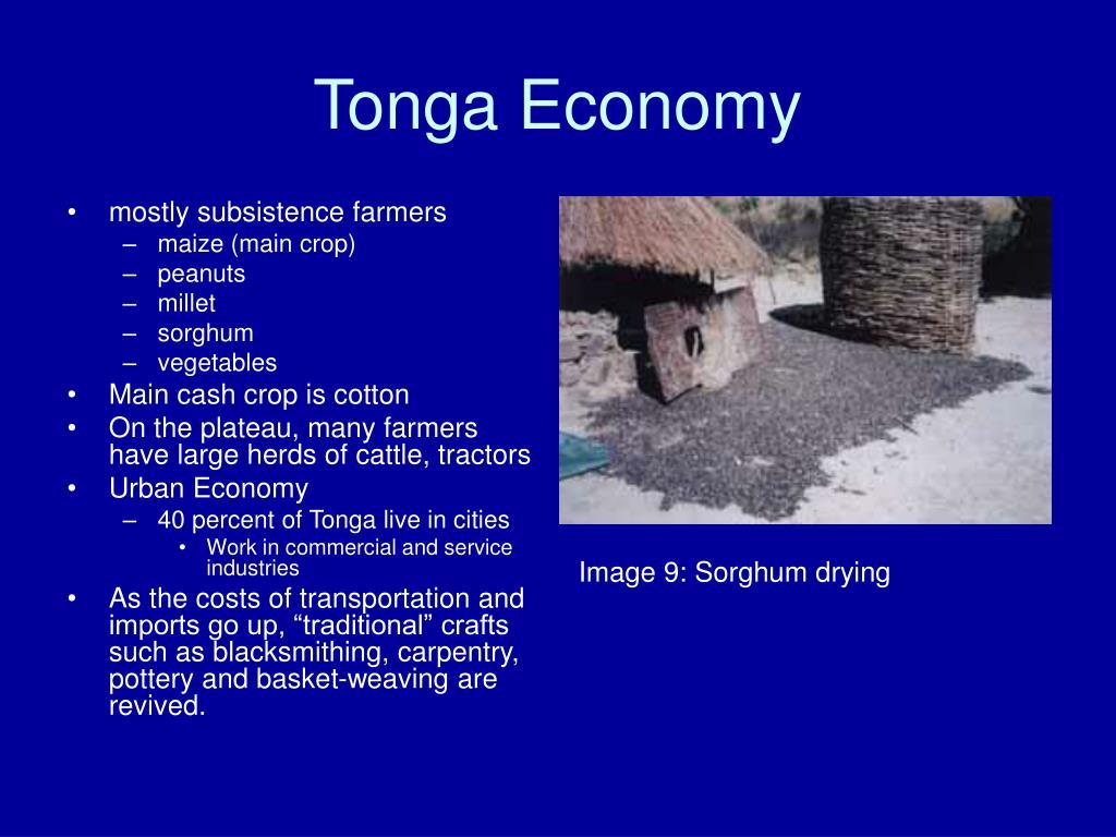 Tonga Economy