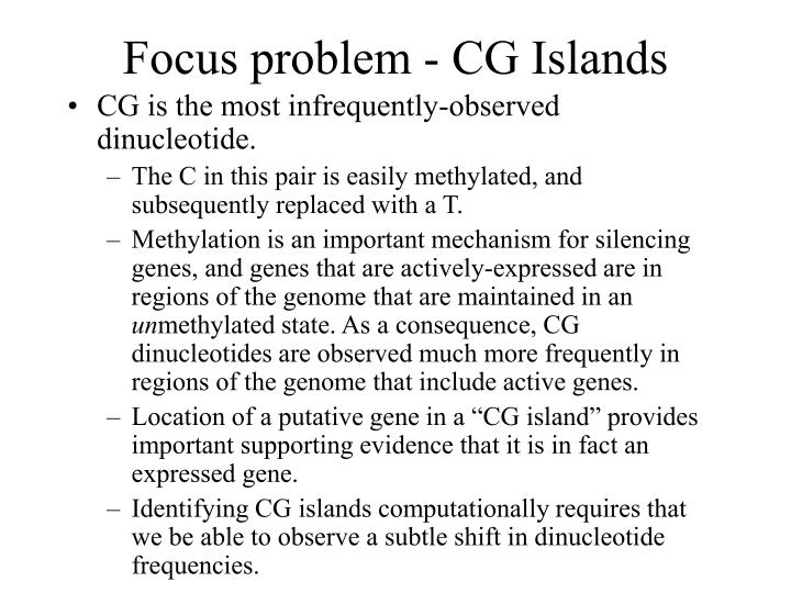 Focus problem cg islands l.jpg