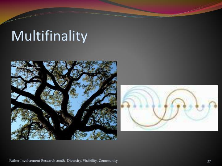 Multifinality