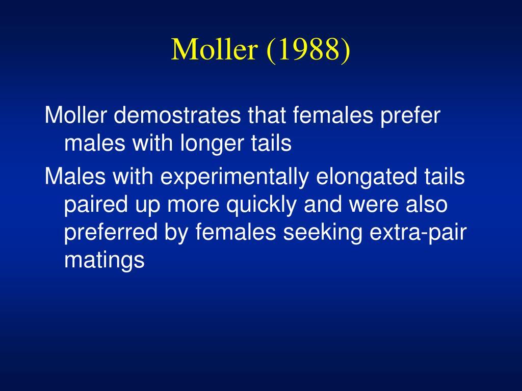 Moller (1988)