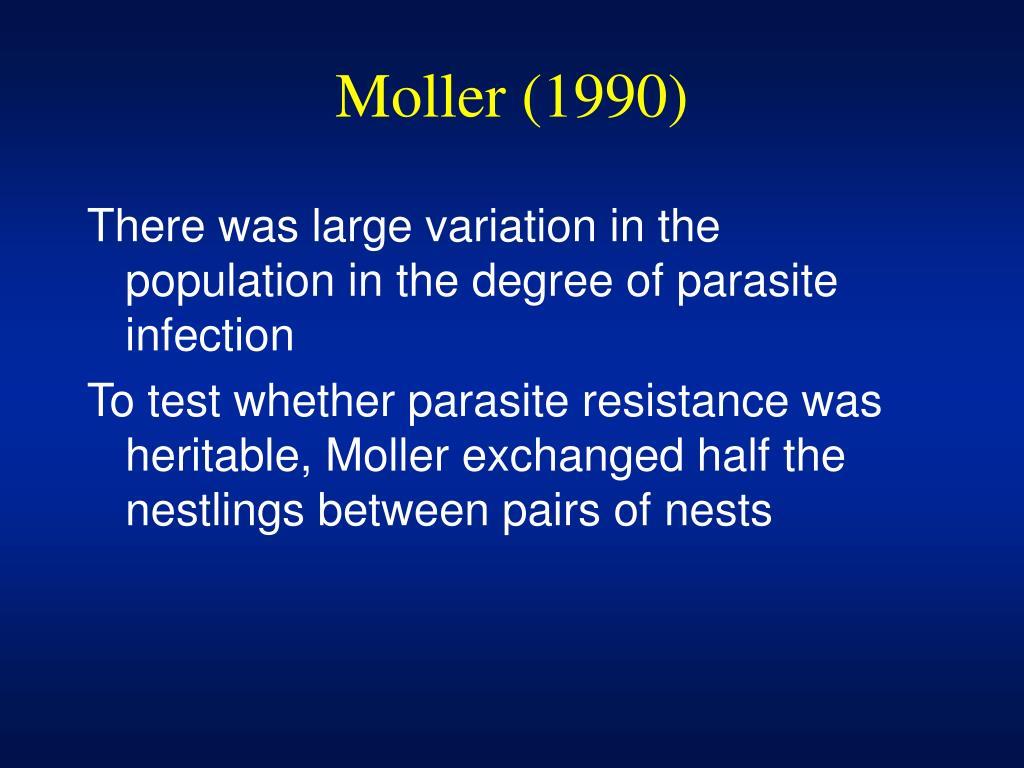 Moller (1990)