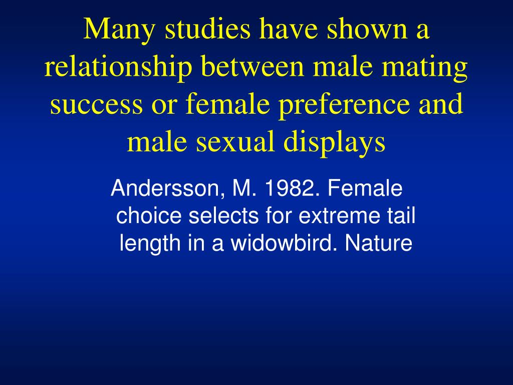 Many studies have shown a relationship between male mating success or female preference and male sexual displays