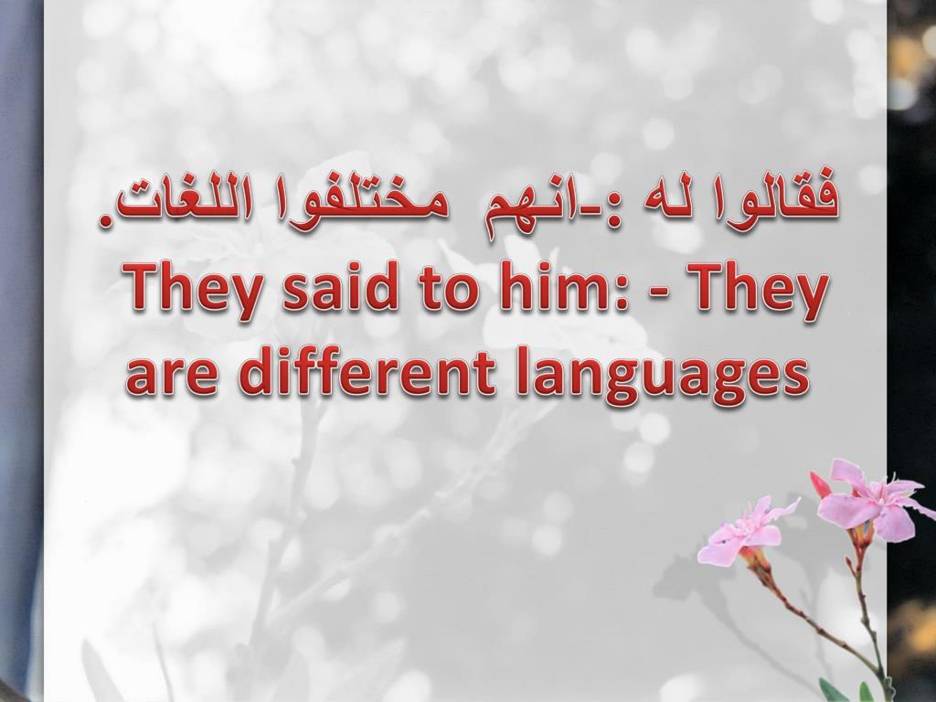 فقالوا له :-انهم  مختلفوا اللغات.