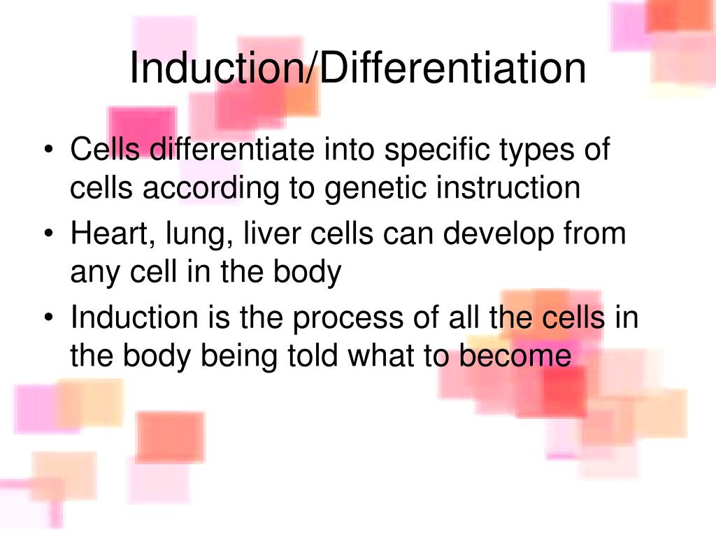 Induction/Differentiation