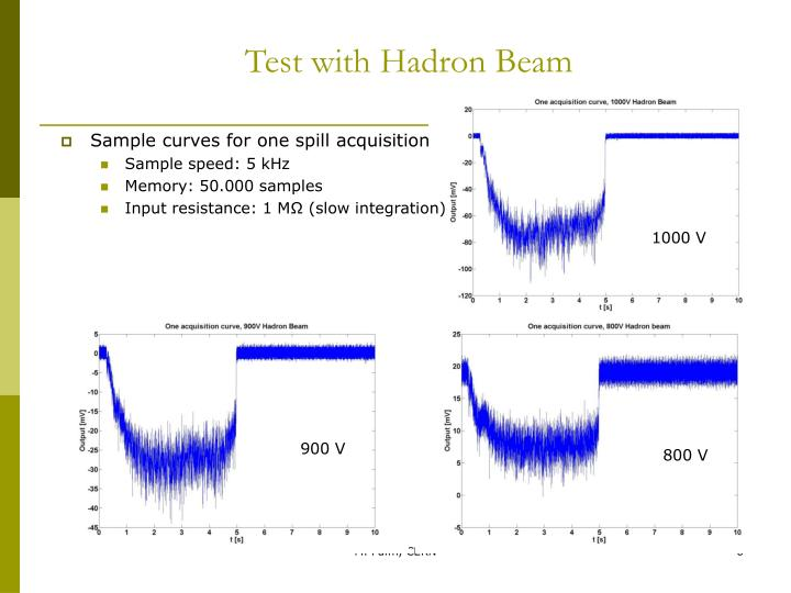 Test with Hadron Beam
