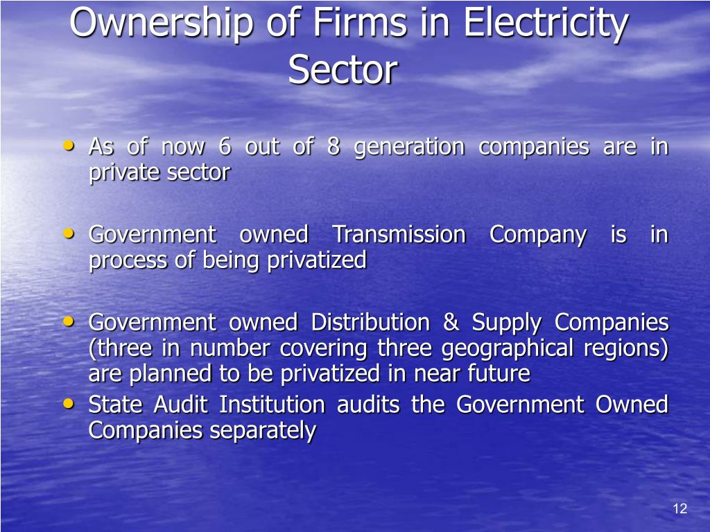Ownership of Firms in Electricity Sector