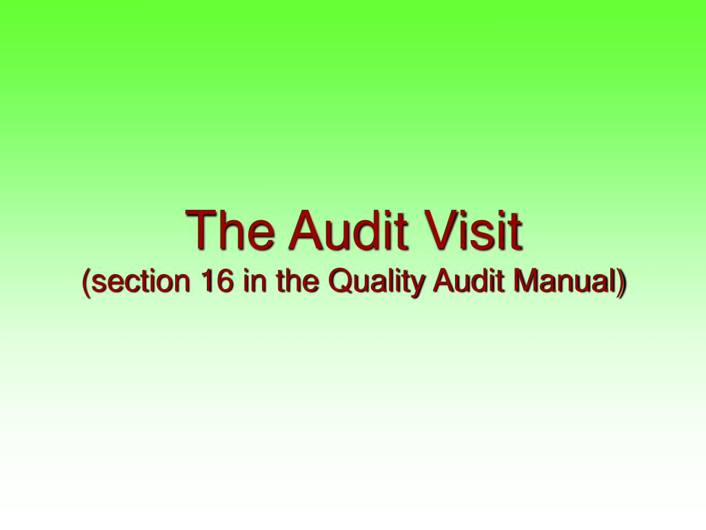 The Audit Visit
