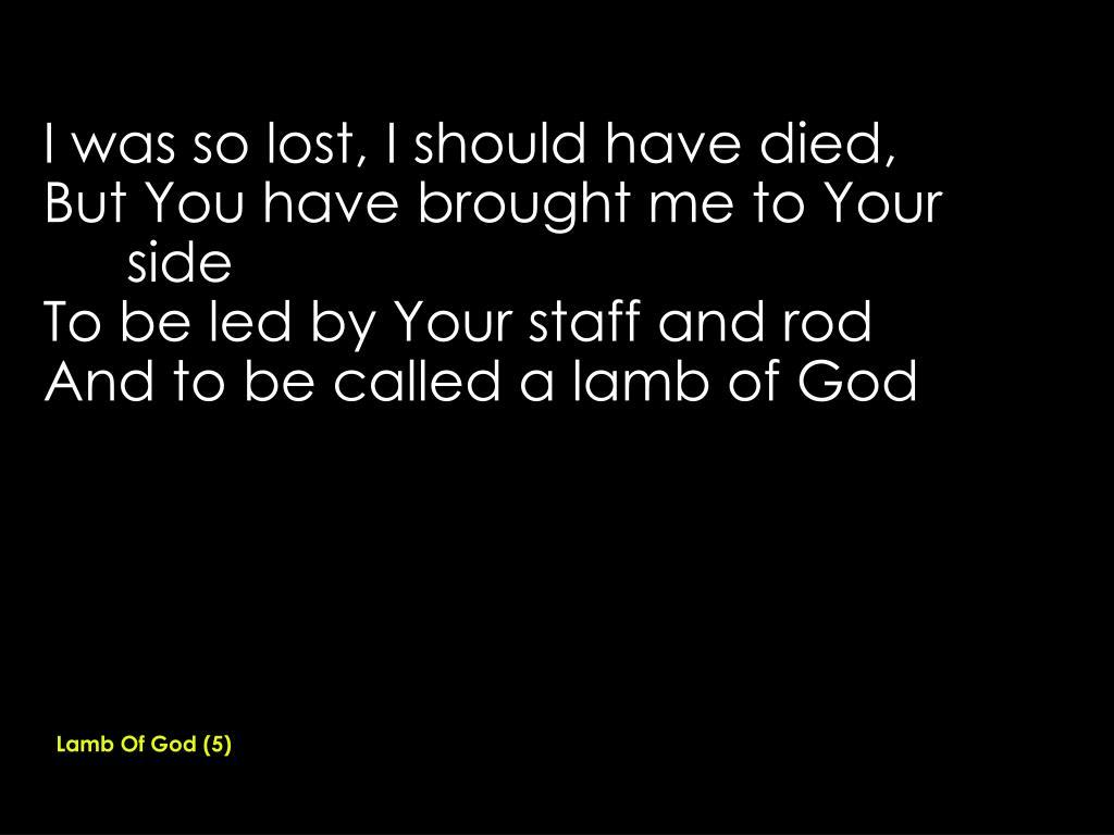 Lamb Of God (5)