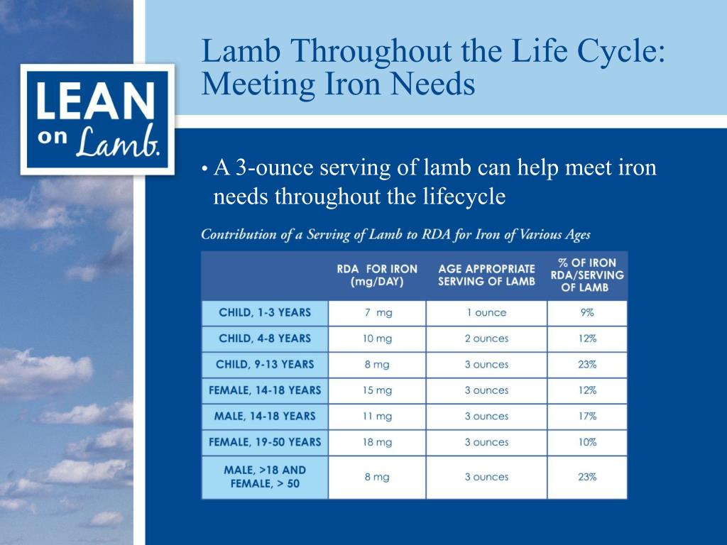Lamb Throughout the Life Cycle: