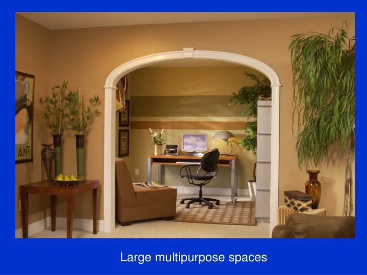 Large multipurpose spaces