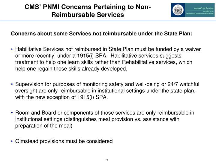CMS' PNMI Concerns Pertaining to Non-Reimbursable Services