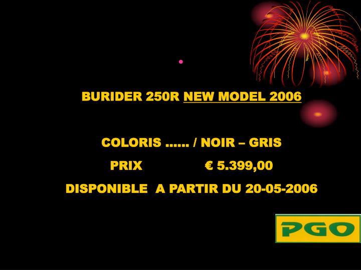 BURIDER 250R