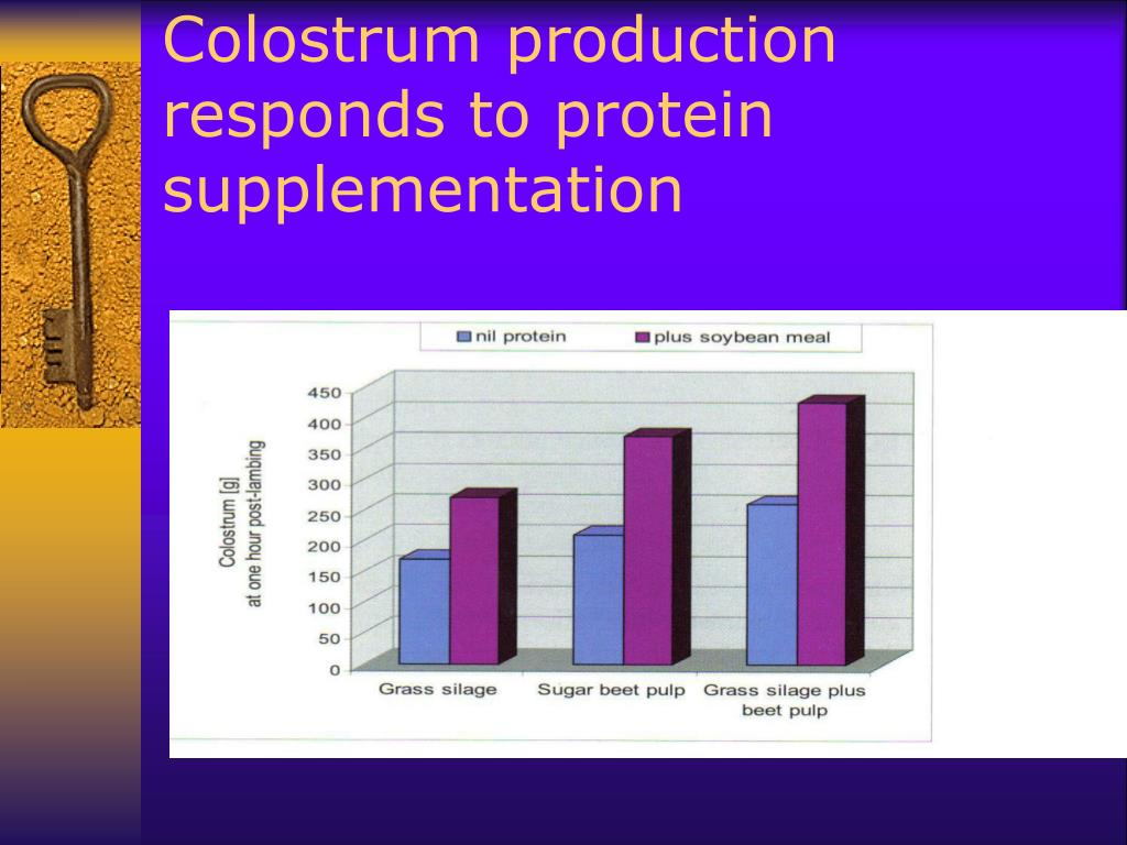 Colostrum production responds to protein supplementation