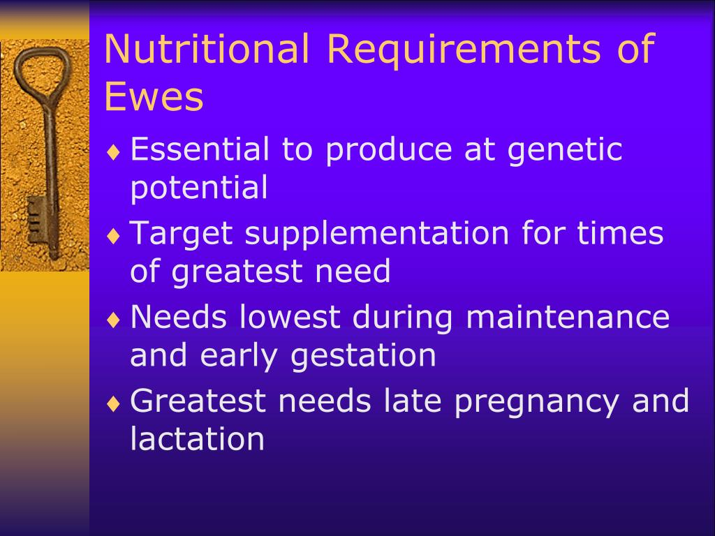 Nutritional Requirements of Ewes