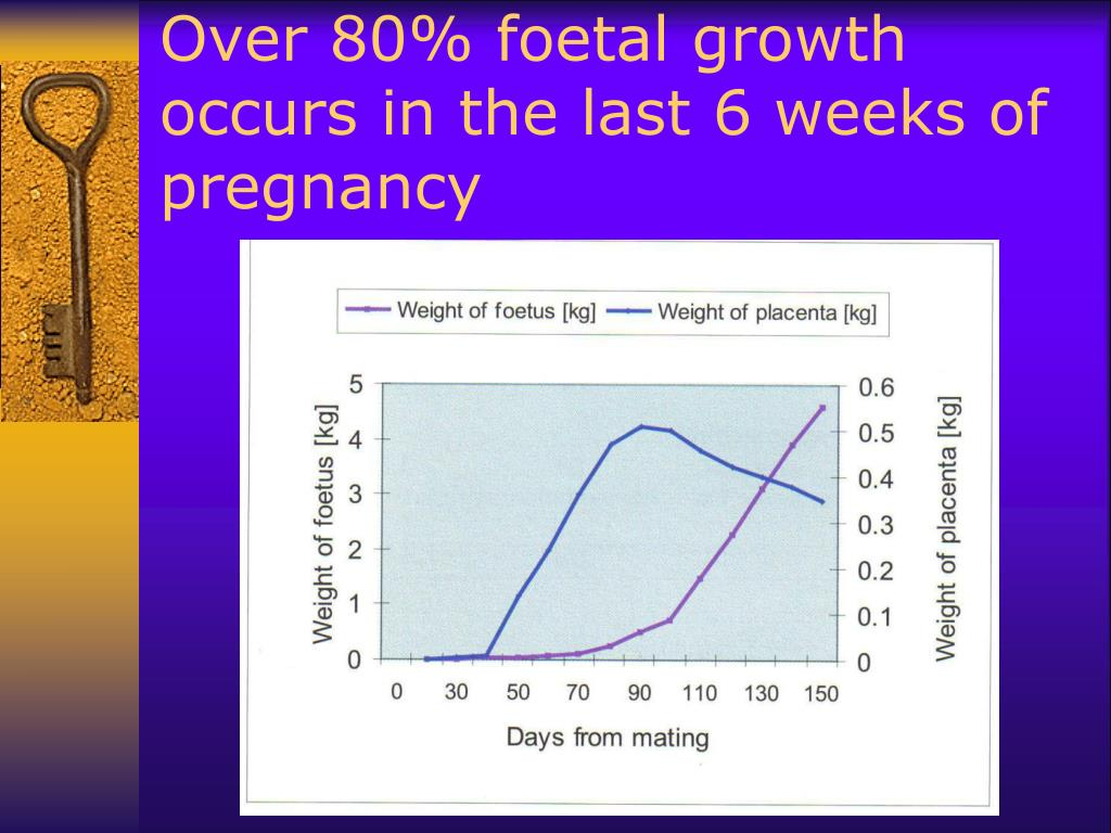 Over 80% foetal growth occurs in the last 6 weeks of pregnancy