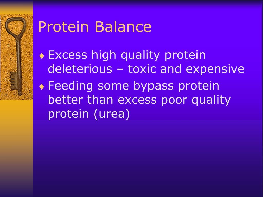 Protein Balance