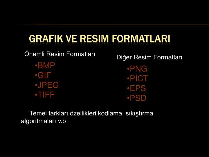 Grafik ve Resim Formatları