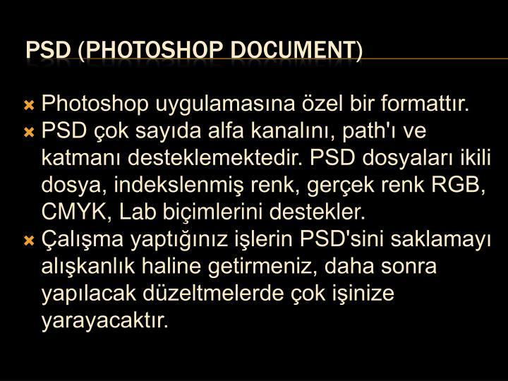 Photoshop uygulamasına özel bir formattır.