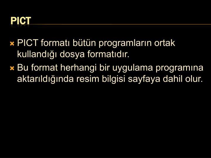 PICT formatı bütün programların ortak kullandığı dosya formatıdır.