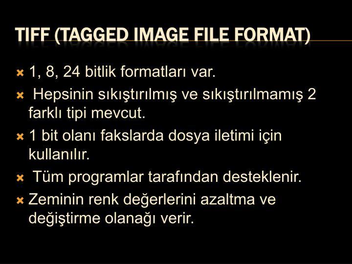 1, 8, 24 bitlik formatları var.