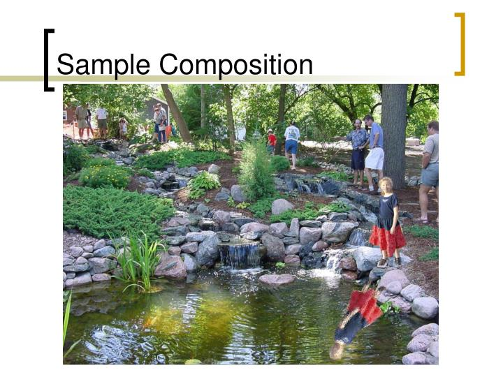 Sample Composition