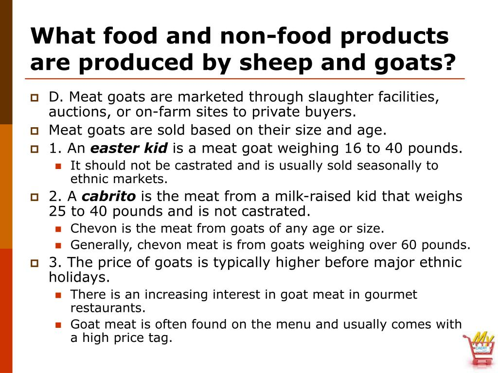 What food and non-food products are produced by sheep and goats?