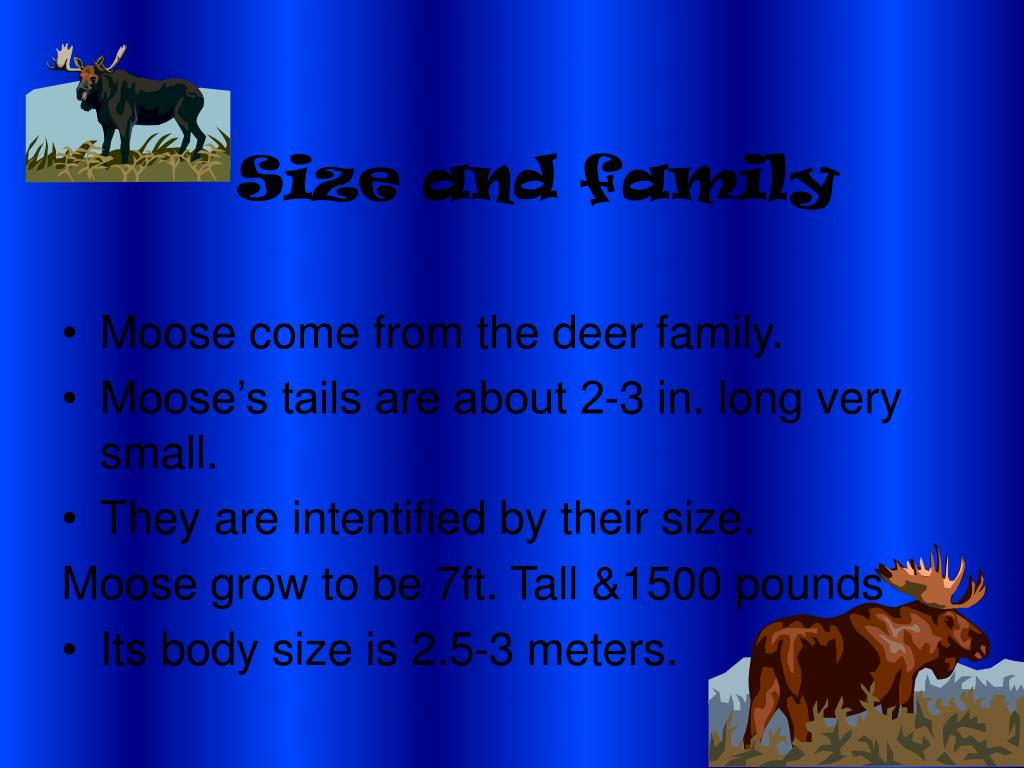 Size and family