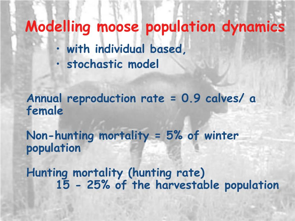 Modelling moose population dynamics