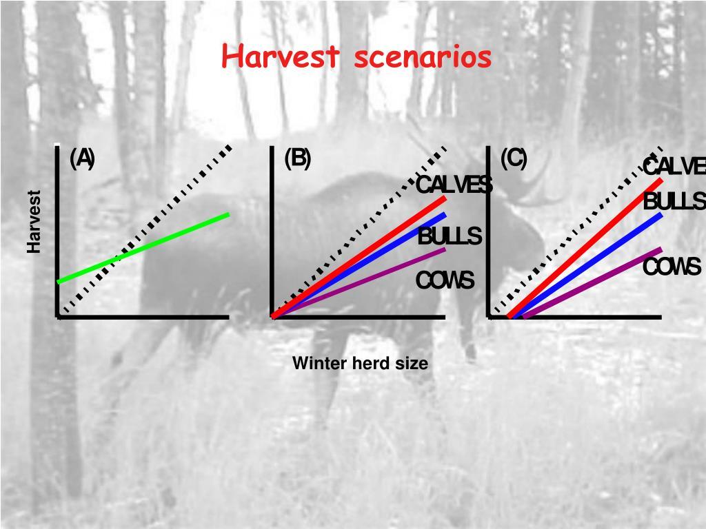 Harvest scenarios