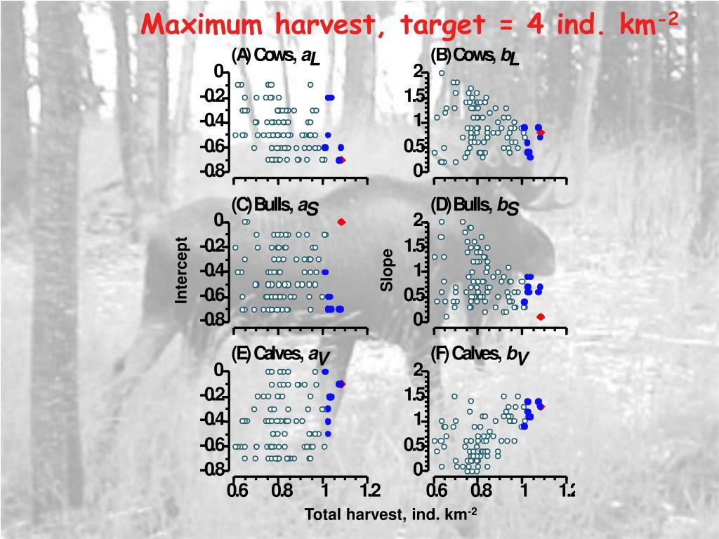 Maximum harvest, target = 4 ind. km