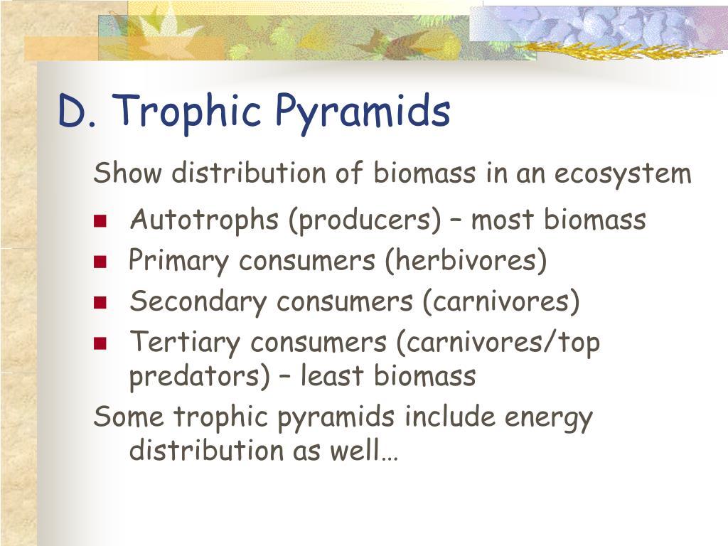 D. Trophic Pyramids