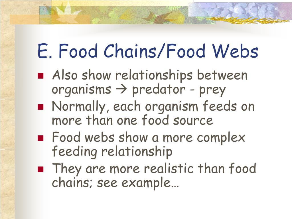 E. Food Chains/Food Webs