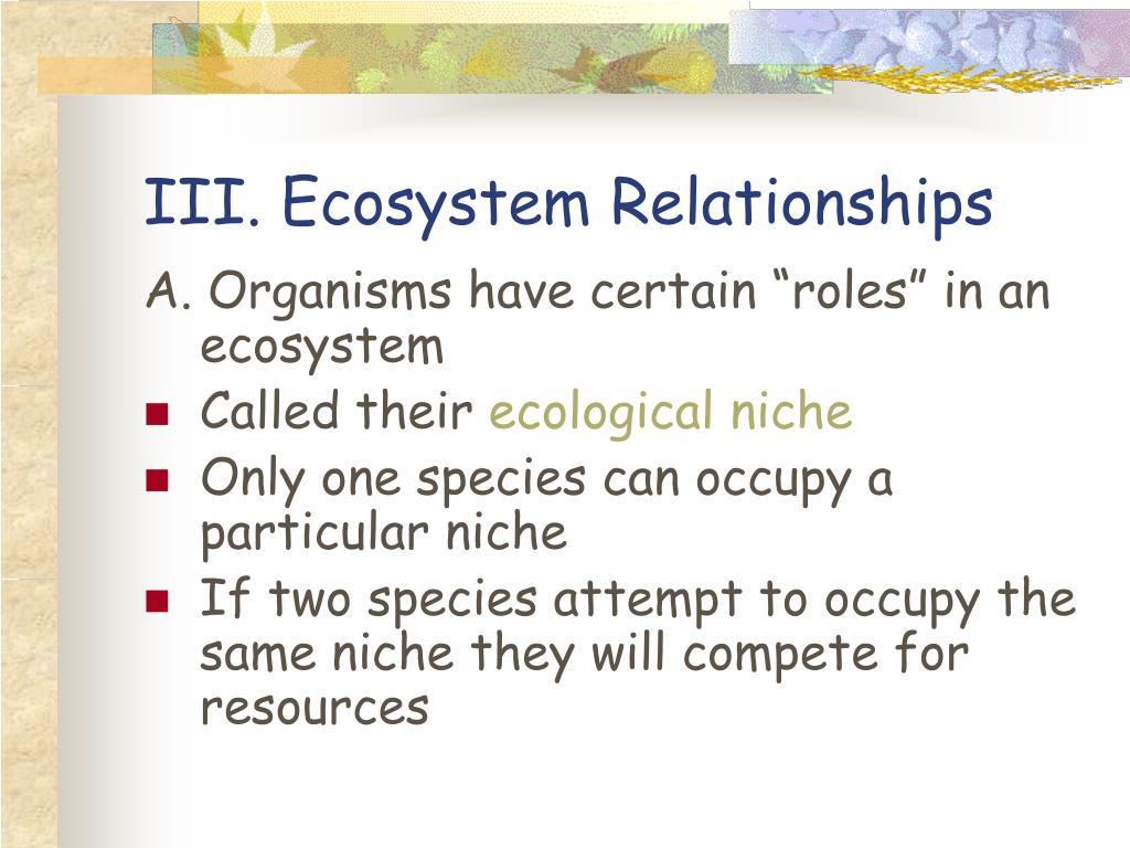 III. Ecosystem Relationships