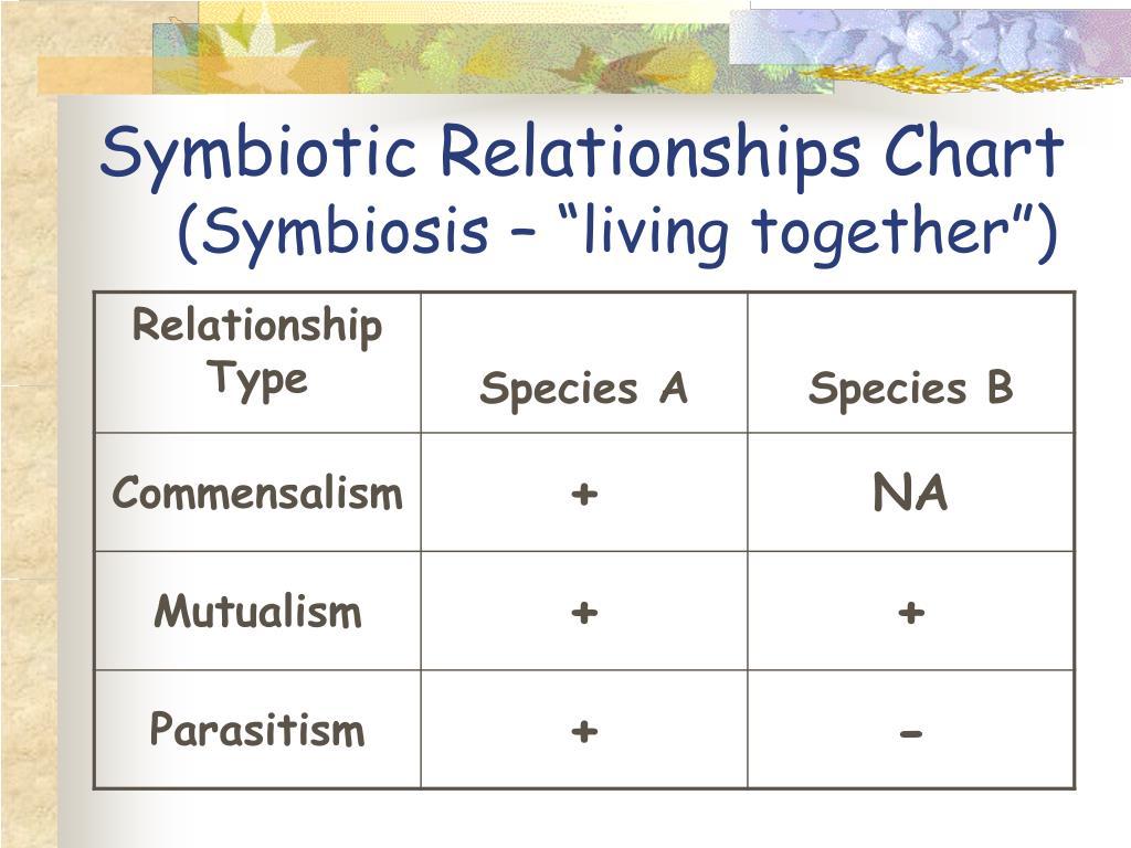 Symbiotic Relationships Chart