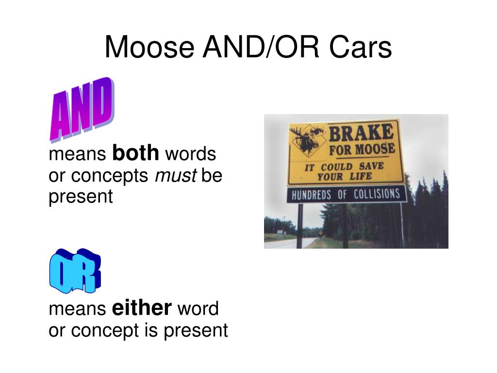 Moose AND/OR Cars