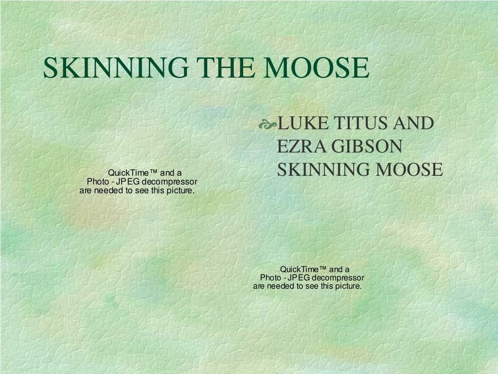 SKINNING THE MOOSE