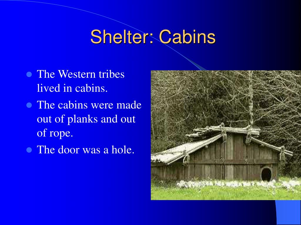 Shelter: Cabins