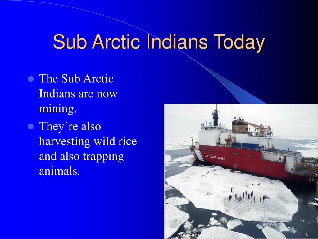 Sub Arctic Indians Today