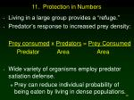 11 protection in numbers